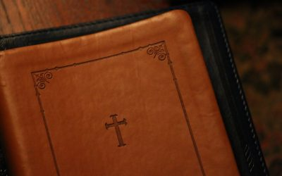 Daily Devotion – The Best Things