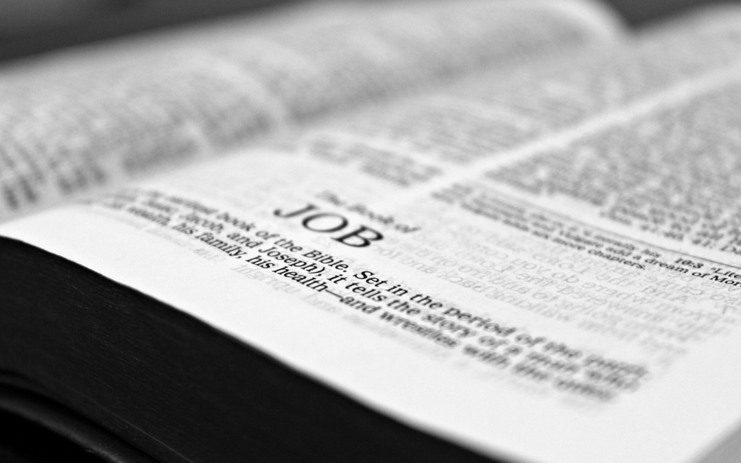 Daily Devotion – God's Words Get the Job Done