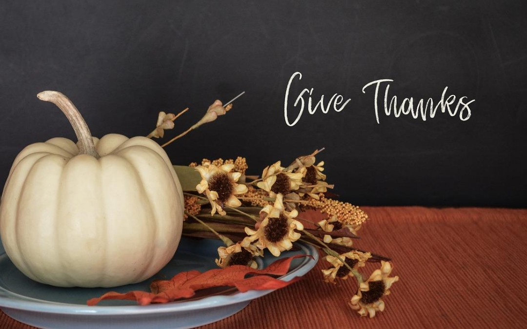 Daily Devotion – Give Thanks? Really?