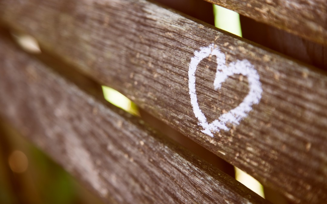 Daily Devotion – Return To Your First Love