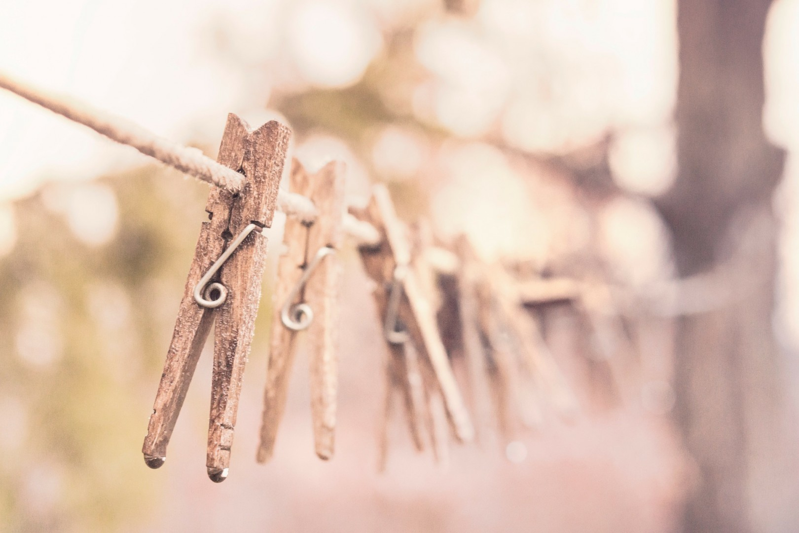 clothes pins on line