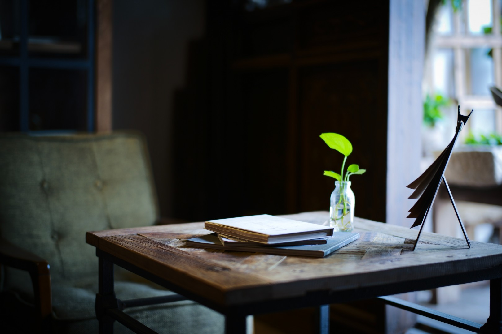 coffee table with books and plant