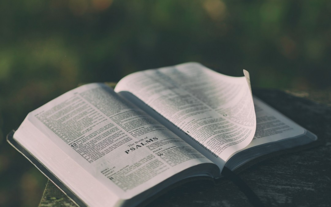 Daily Devotion – Psalm 119:52 – Meditate on God's Word