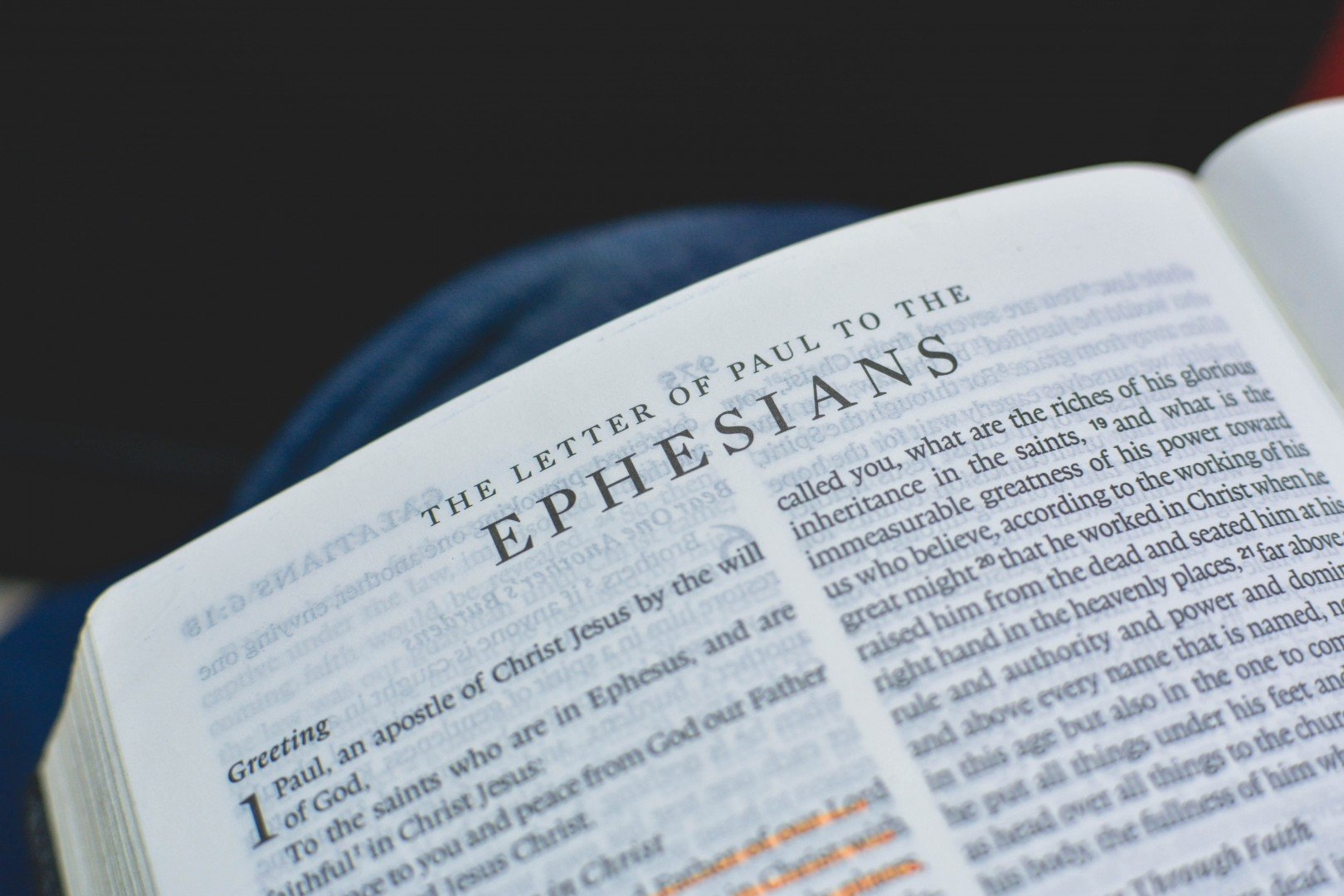 bible the word